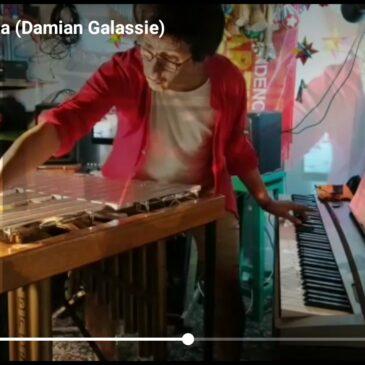 Pacaya en calma (Damian Galassie)